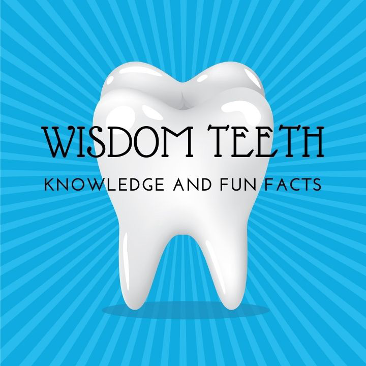 wisdom tooth KNOWLEDGE AND FUN FACTS